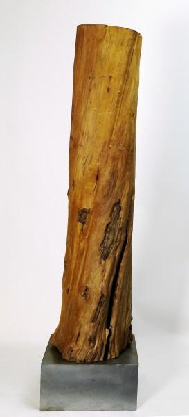 """Skulptur """"Stamm ausgehöhlt, an einen Knochen erinnernd"""", SKUL 064"""