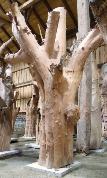 """Holzskulptur """"Obstgarten, raumgreifende Gestalt"""" / SKUL 090-44"""