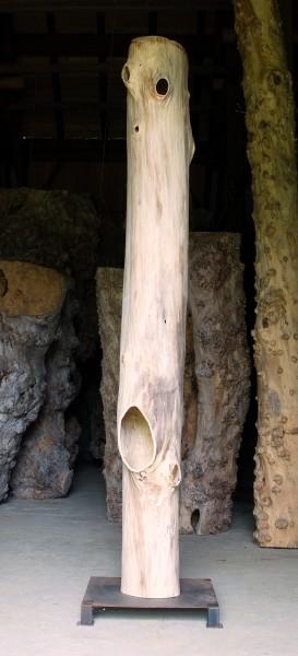 """Baumskulptur SKUL 107-15 """"cum tacent clamant (indem sie schweigen, schreien sie)"""""""