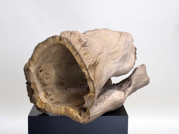 Urne, Hülle aus einem Baumstamm / Urne H 103