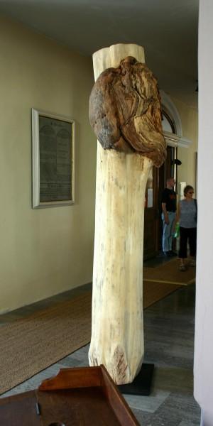"""Skulptur """"Bleicher Körper mit offener Wunde"""", SKUL 127"""