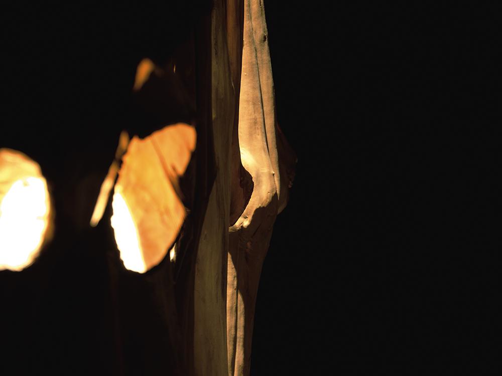 Asbach-2011-SKUL-193-h-ngende-K-rper-Foto-Thuringer-d