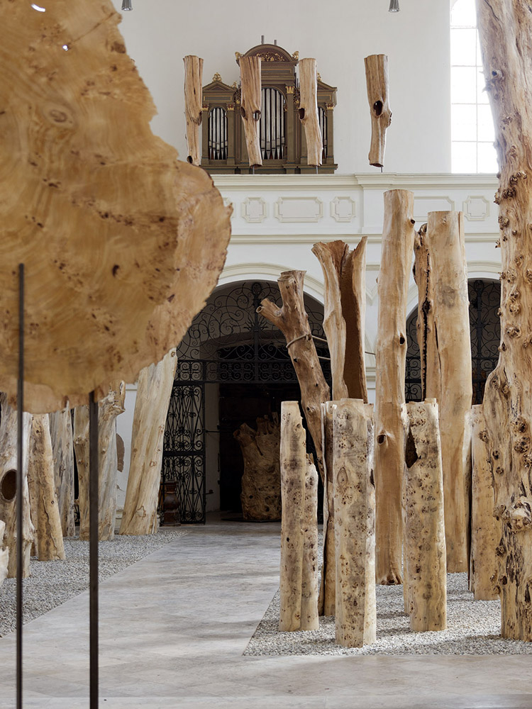 Ausstellung-Burghausen-2012-Haut-und-H-lle-aa